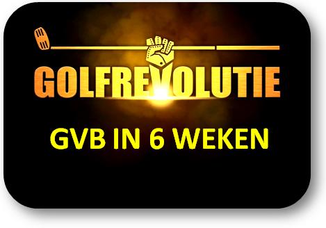 Klik hier om toegang te krijgen tot de Informatie over de GVB in 6 weken cursus